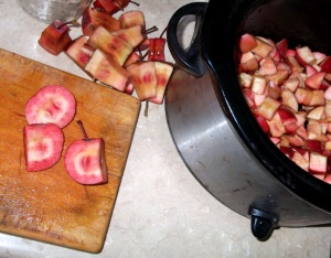 Red Flesh Apples mid-prep for apple butter. Left of frame: Small cutting board with a sliced apple whose insides look like a red and white bullseye. Center-top of frame: apple cores. Right of frame: crock pot already half full of diced apples. Photo by me.