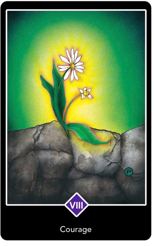 Osho Zen Tarot - 8 of Major Arcana - Courage - A daisy pushing up through the concrete.