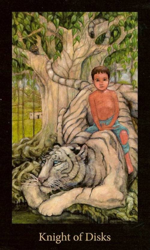 Mary El Tarot - Knight of Discs - A child sits on the back of a lounging white tiger, under the shelter of a mature, leafing tree.